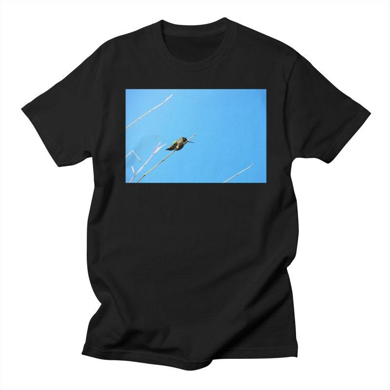 Hummingbird Women's Unisex T-Shirt by Soulstone's Artist Shop