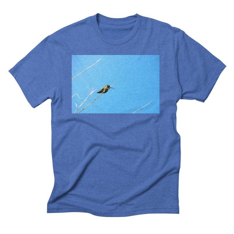 Hummingbird Men's Triblend T-Shirt by Soulstone's Artist Shop