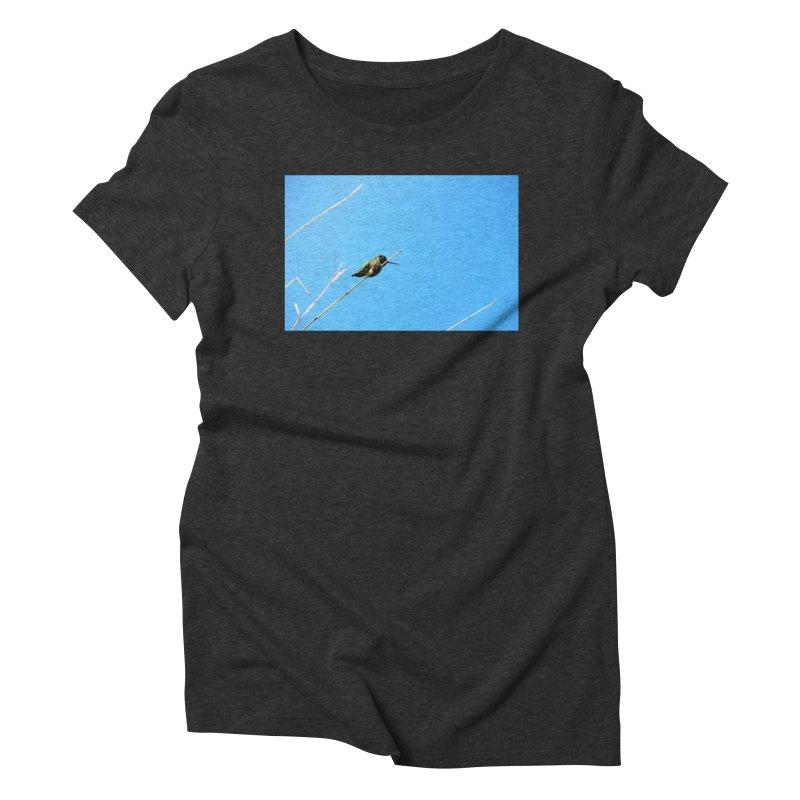 Hummingbird Women's Triblend T-Shirt by Soulstone's Artist Shop