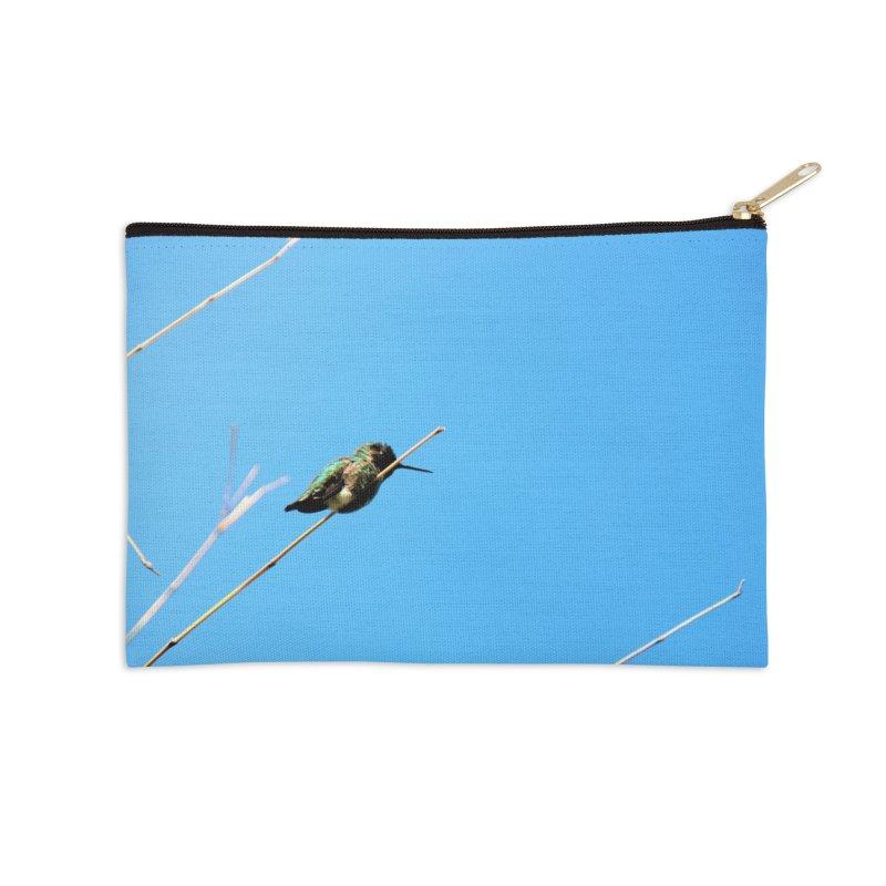 Hummingbird   by Soulstone's Artist Shop