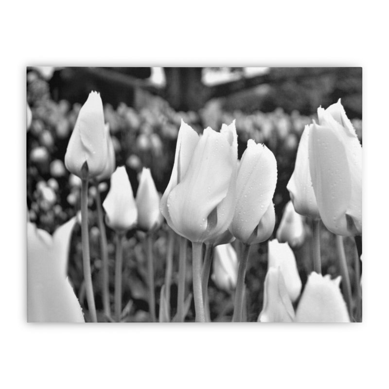 Grayscale tulips Home Stretched Canvas by Soulstone's Artist Shop