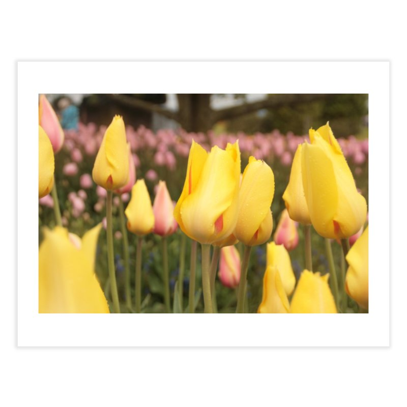 Yellow Tulips Home Fine Art Print by Soulstone's Artist Shop