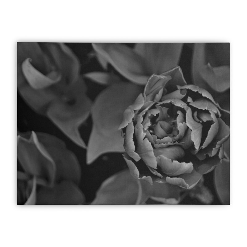 grayscale rose Home Stretched Canvas by Soulstone's Artist Shop