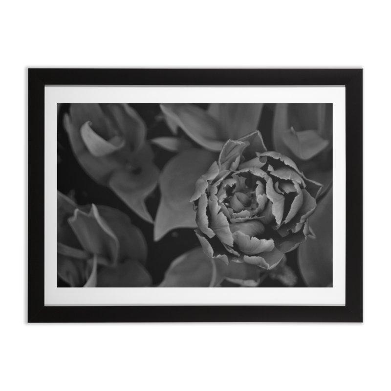 grayscale rose Home Framed Fine Art Print by Soulstone's Artist Shop
