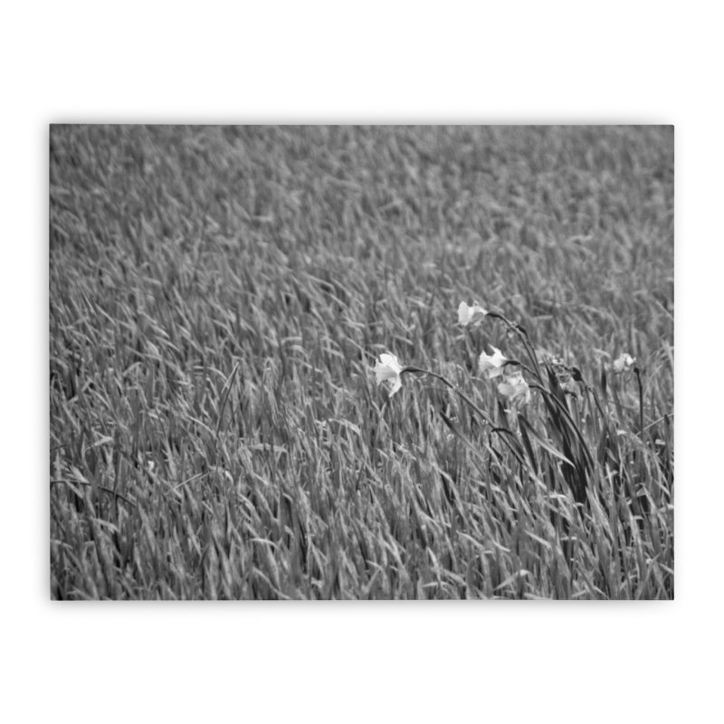 Grayscale field Home Stretched Canvas by Soulstone's Artist Shop