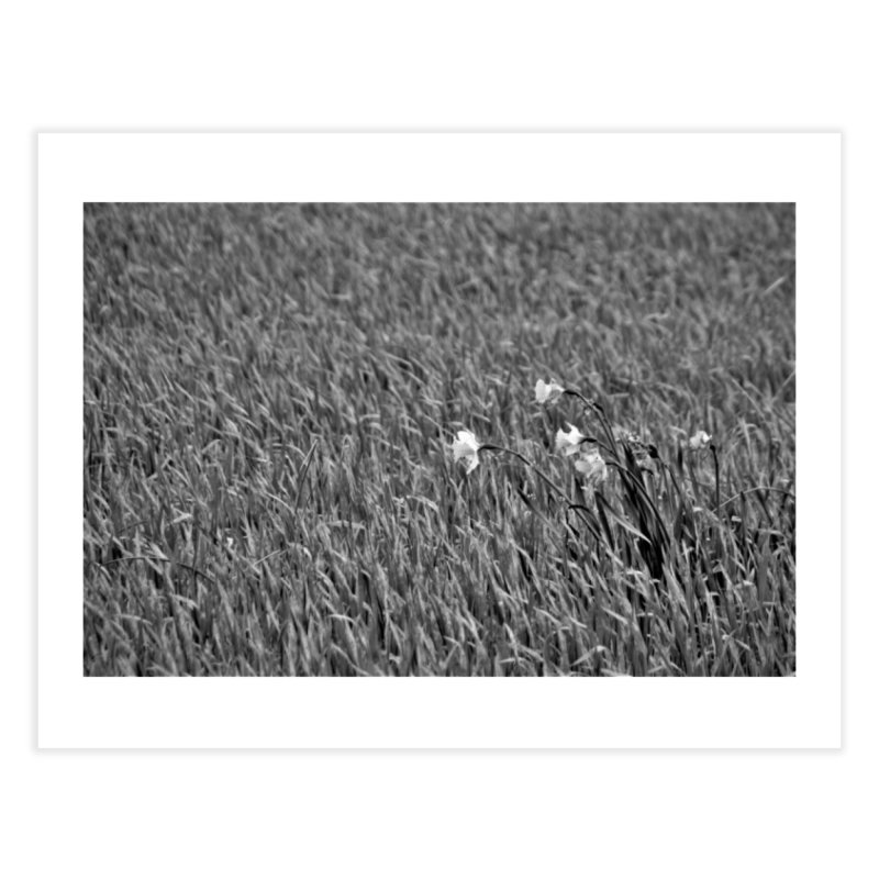 Grayscale field Home Fine Art Print by Soulstone's Artist Shop