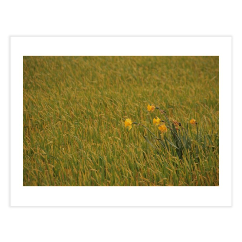 Field Home Fine Art Print by Soulstone's Artist Shop