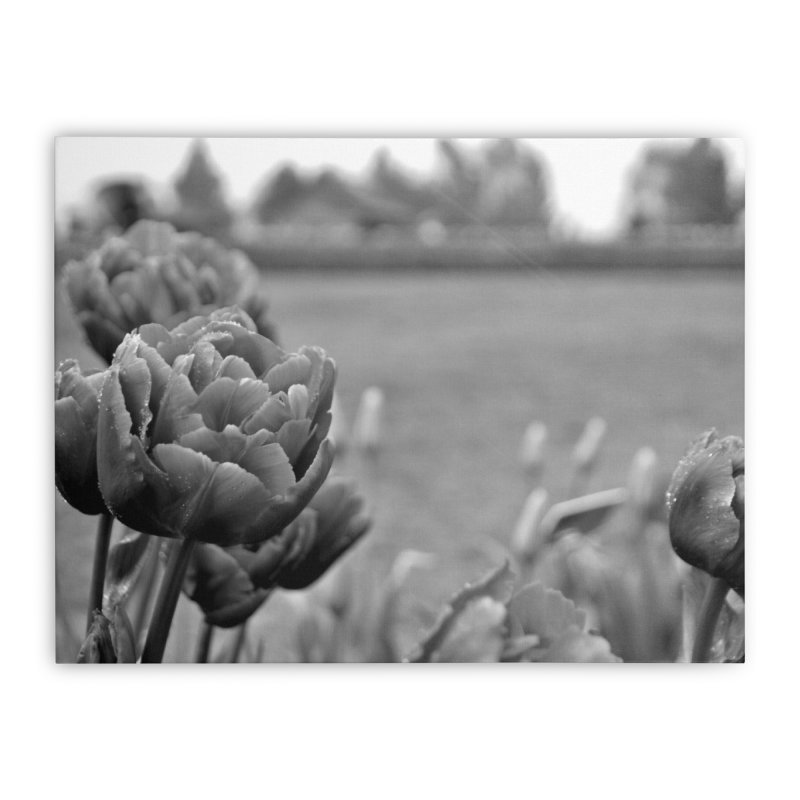 Pink grayscale Home Stretched Canvas by Soulstone's Artist Shop