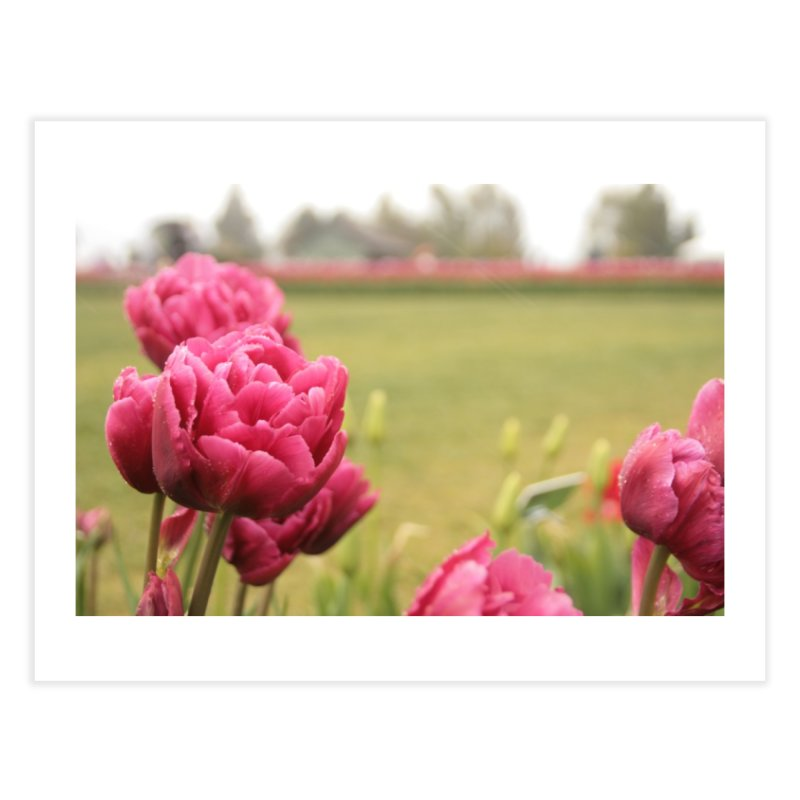 Pink petaled Home Fine Art Print by Soulstone's Artist Shop
