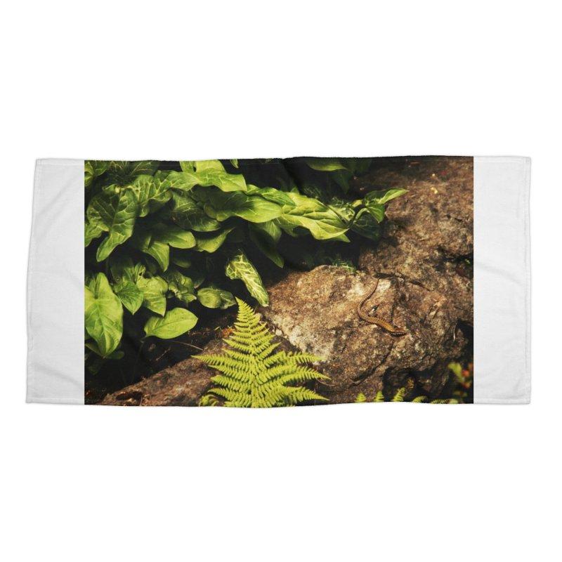 Lizard Accessories Beach Towel by Soulstone's Artist Shop
