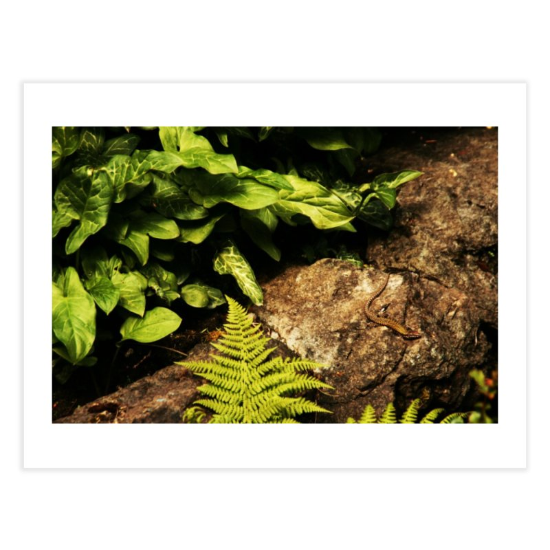 Lizard Home Fine Art Print by Soulstone's Artist Shop