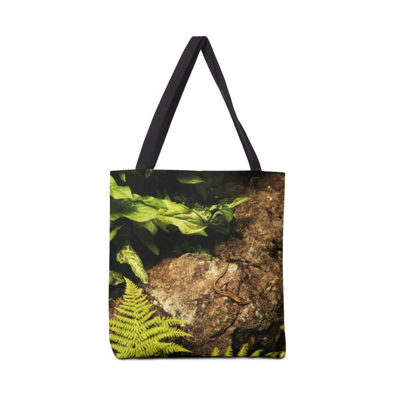 Lizard Accessories Bag by Soulstone's Artist Shop