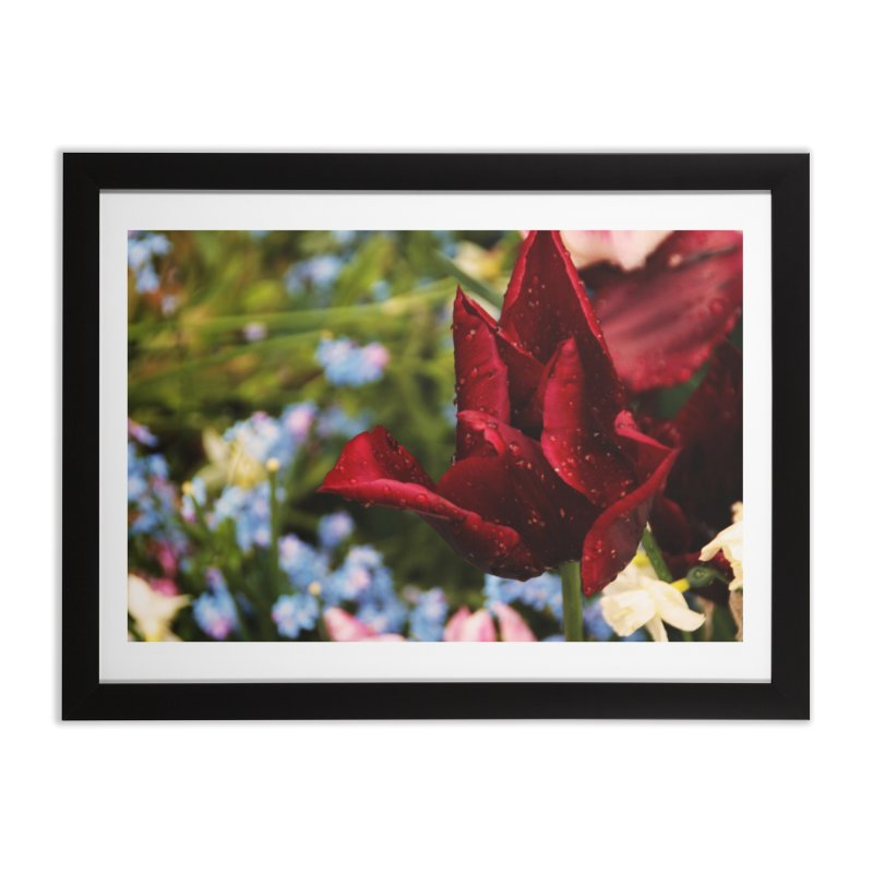 Red droplets Home Framed Fine Art Print by Soulstone's Artist Shop