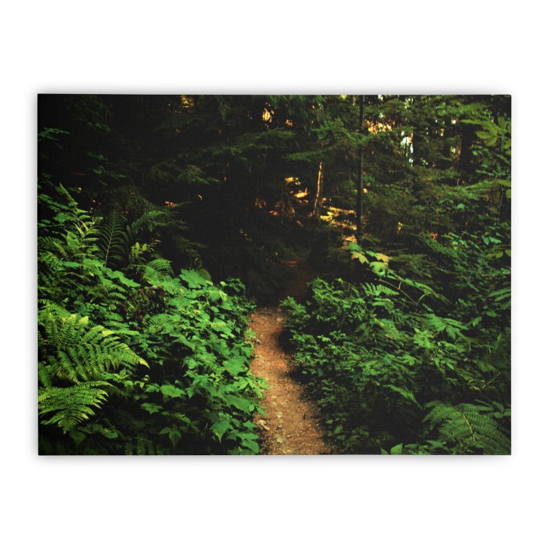 Forest Path Home Stretched Canvas by Soulstone's Artist Shop