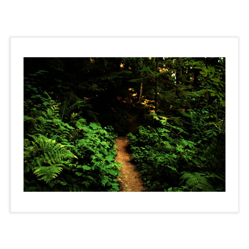 Forest Path Home Fine Art Print by Soulstone's Artist Shop