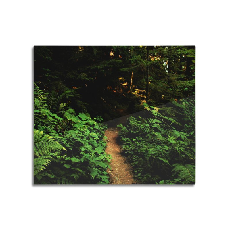 Forest Path Home Mounted Aluminum Print by Soulstone's Artist Shop