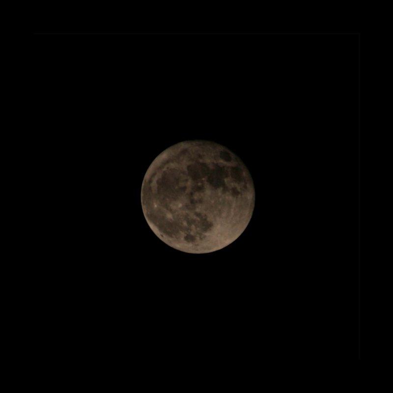 Moon by Soulstone's Artist Shop