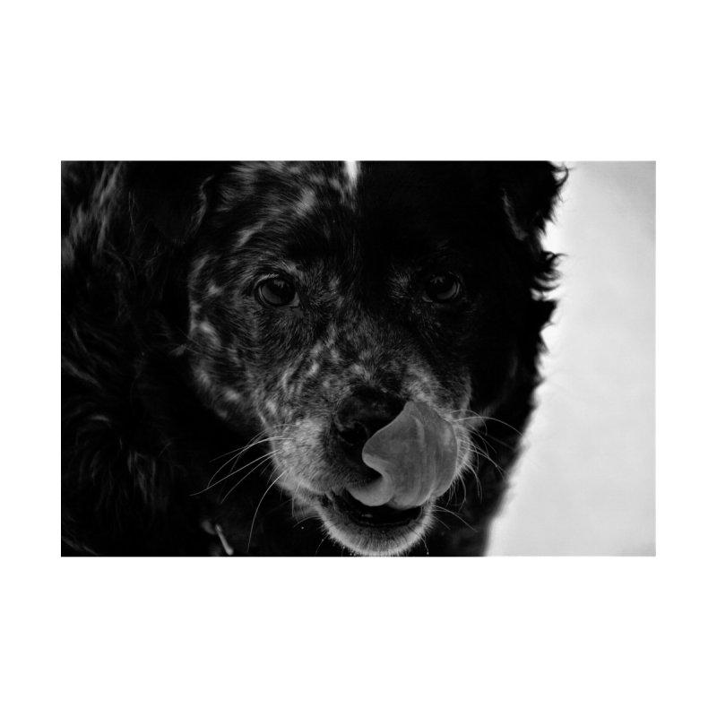 Dog by Soulstone's Artist Shop
