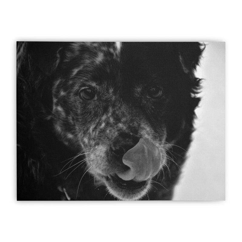 Dog Home Stretched Canvas by Soulstone's Artist Shop