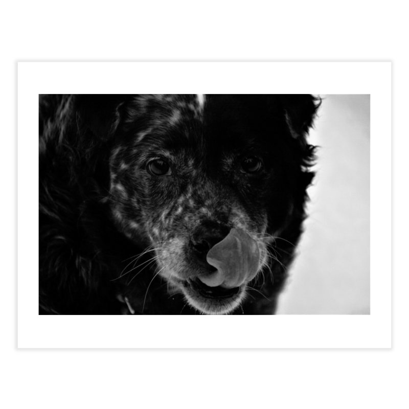 Dog Home Fine Art Print by Soulstone's Artist Shop