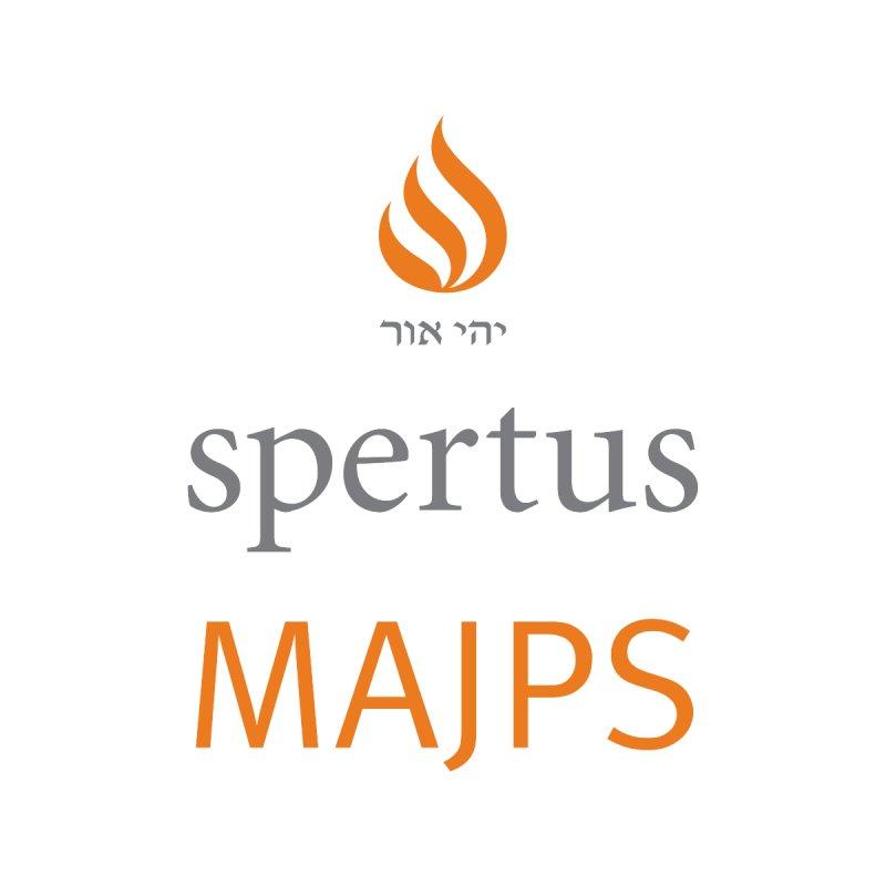 Spertus MAJPS 3 Lines Color Men's Pullover Hoody by Spertus Shop