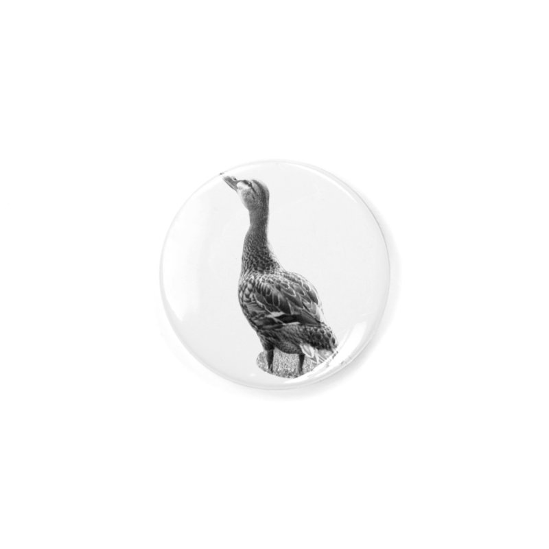 Duck looking up - Black and White Accessories Button by Make a statement, laugh, enjoy.