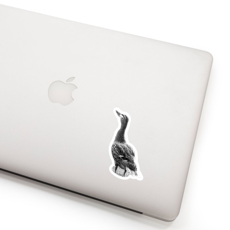 Duck looking up - Black and White Accessories Sticker by Make a statement, laugh, enjoy.