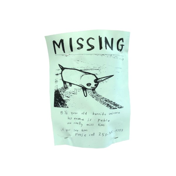 Design for Pablo, the missing burrito unicorn (aqua tint, stapled flyer)