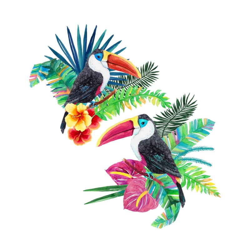 Toucan Birds by StellaCaraman's