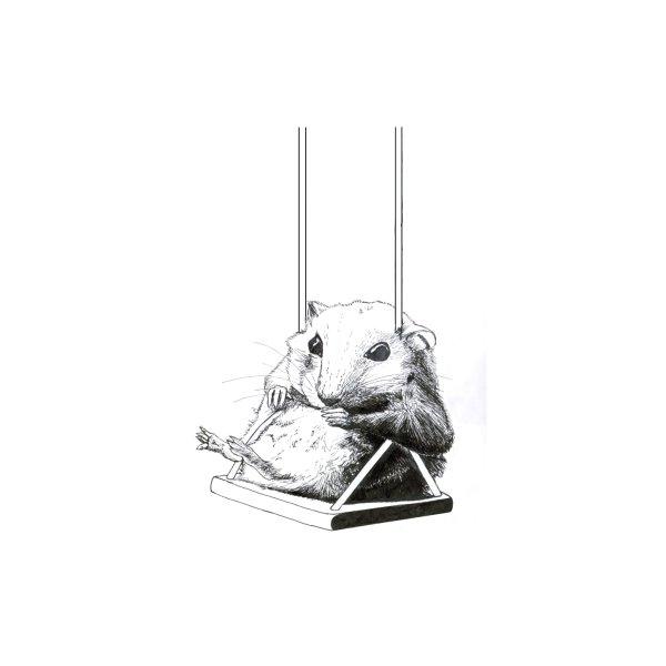 image for Hamster Swing