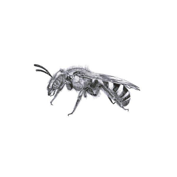 image for Native Bee-utiful