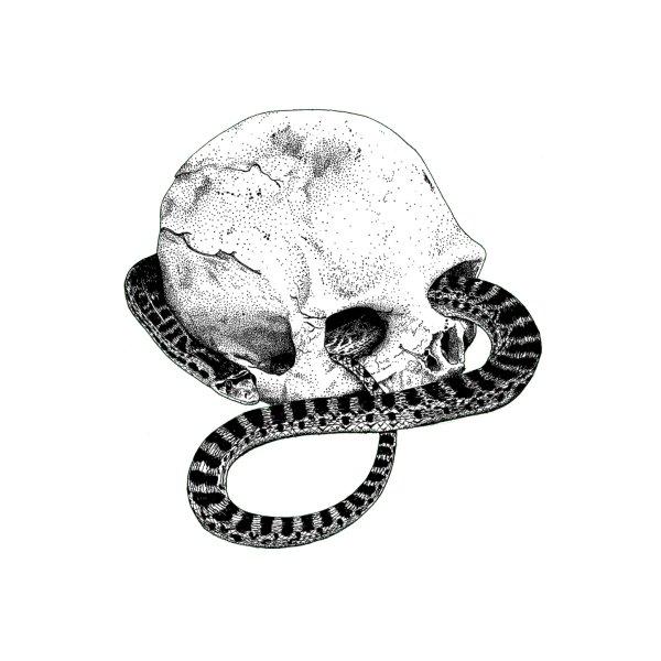image for Snake n' Skull