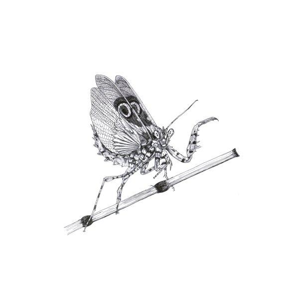 Design for Spiny Mantis