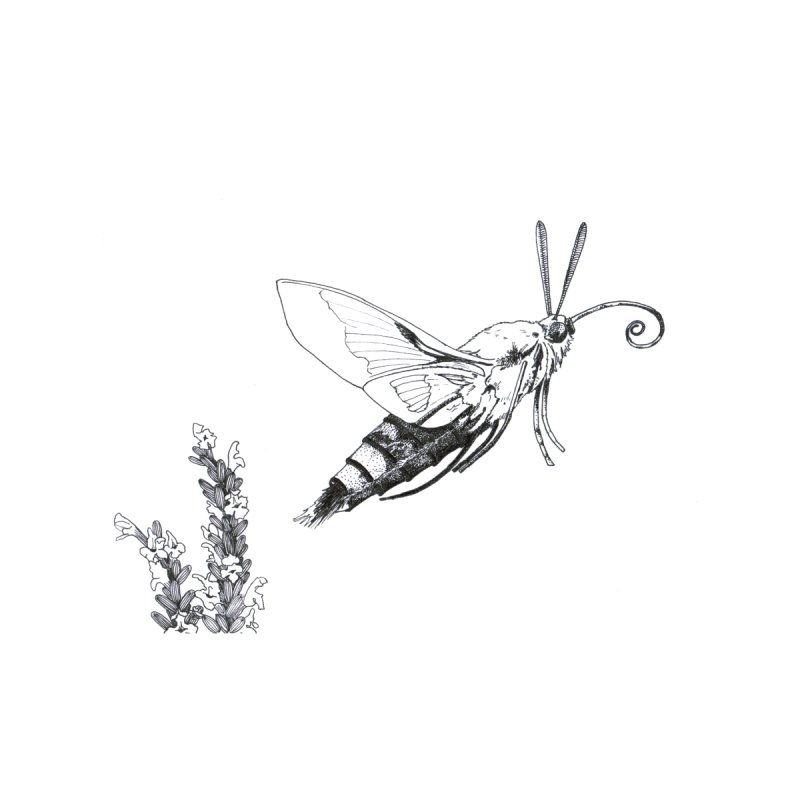 Hummermoth Finna to Fly Men's T-Shirt by Stippled Science Artist Shop