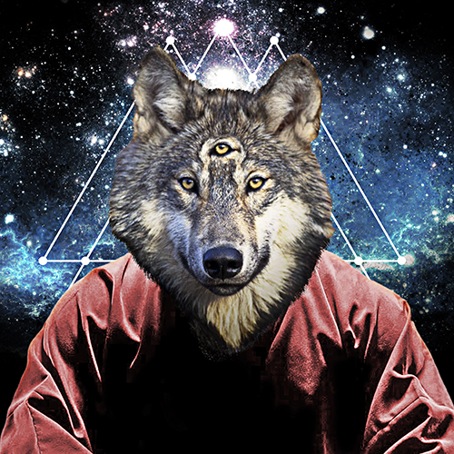 Aware-Wolf-Collection