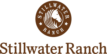 TheStillwaterLife's Artist Shop Logo