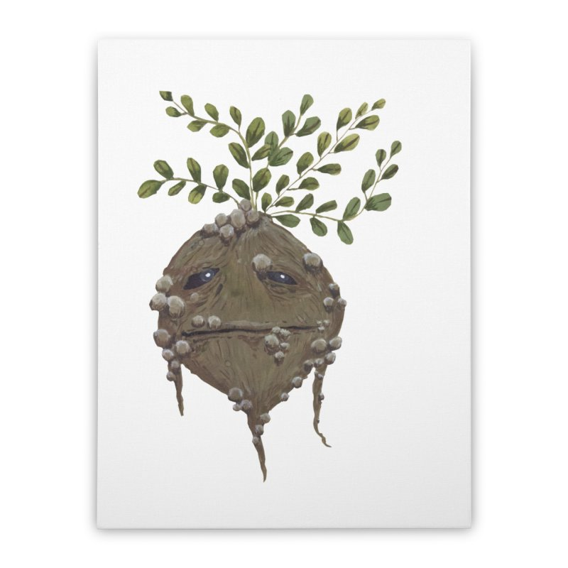 Mandrake Root Home Stretched Canvas by Thistleroot's Artist Shop