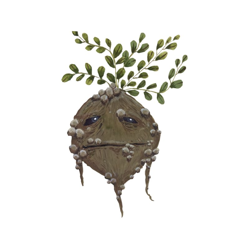 Mandrake Root by Thistleroot's Artist Shop
