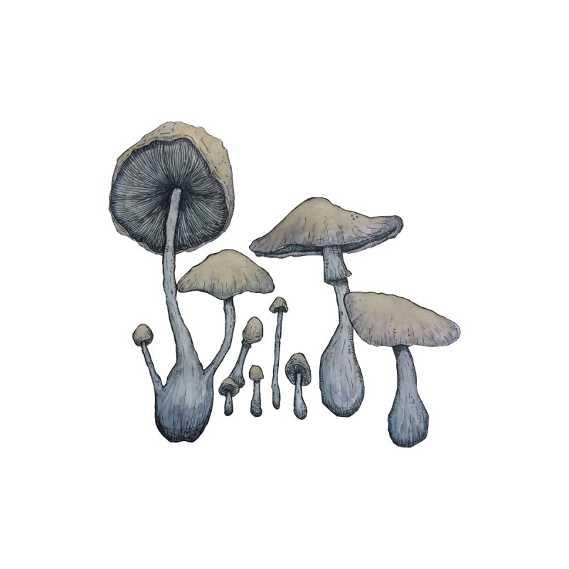 Mushrooms by Thistleroot's Artist Shop