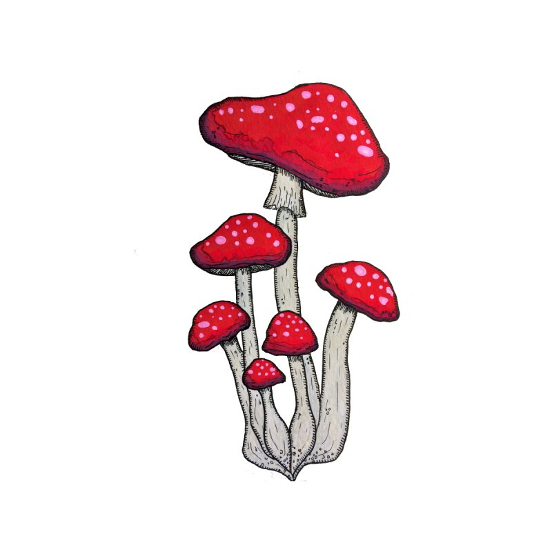 Champignon Rouge by Thistleroot's Artist Shop