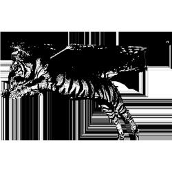 TigerH4wk Logo