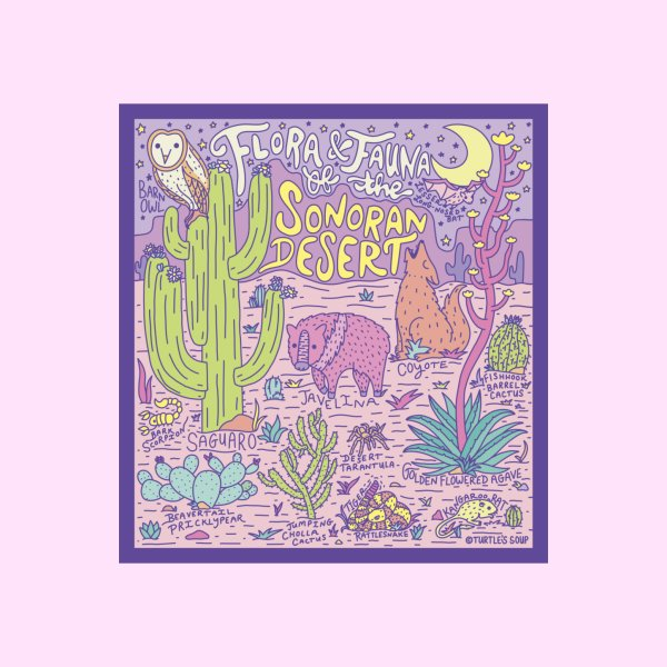 image for Flora & Fauna of the Sonoran Desert