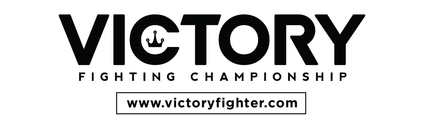 VictoryFighter Cover