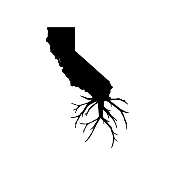 image for Cal Roots