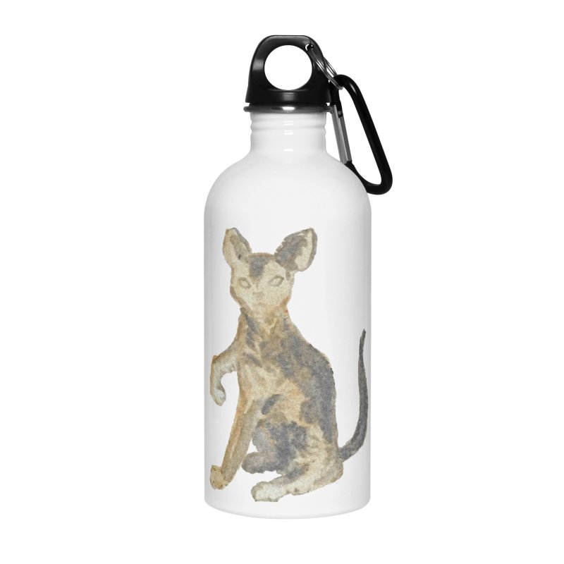 Cat Orange Gray Watercolor Pencils Accessories Water Bottle by The Wilderness Store