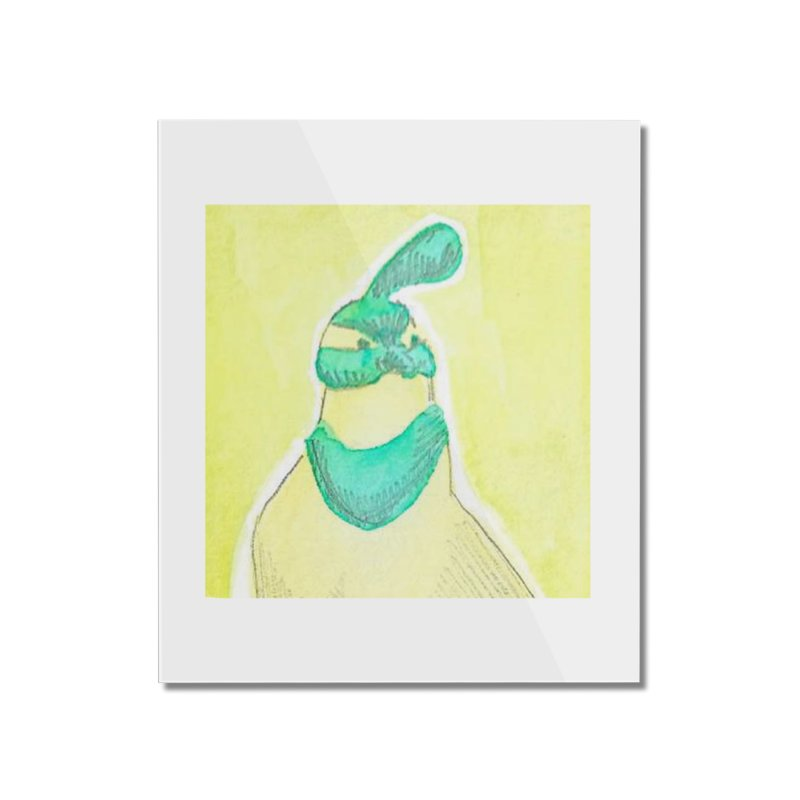 Quail in Blue, Green, Yellow Home Mounted Acrylic Print by The Wilderness Store