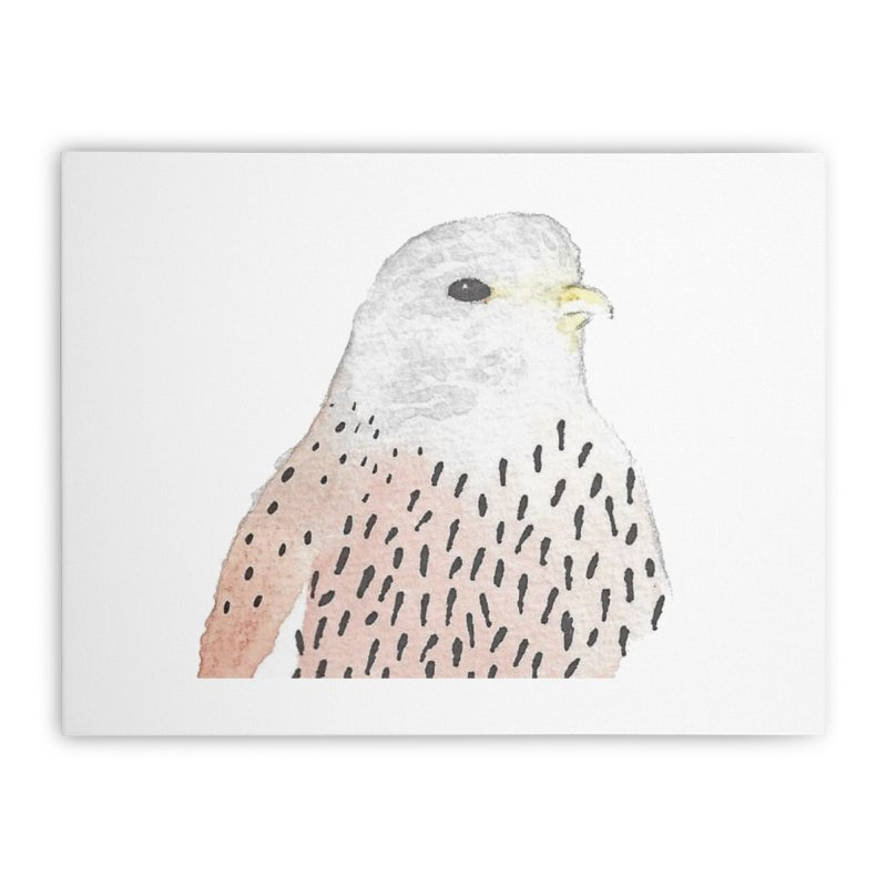 Watercolor Kestrel Home Stretched Canvas by The Wilderness Store