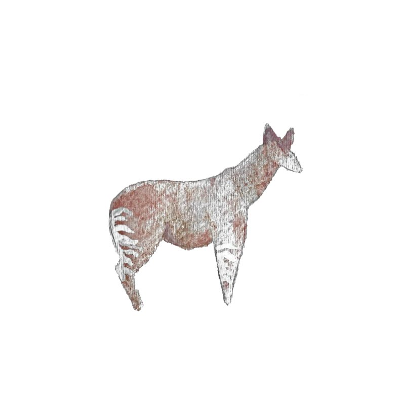 Watercolor Okapi Standing   by The Wilderness Store