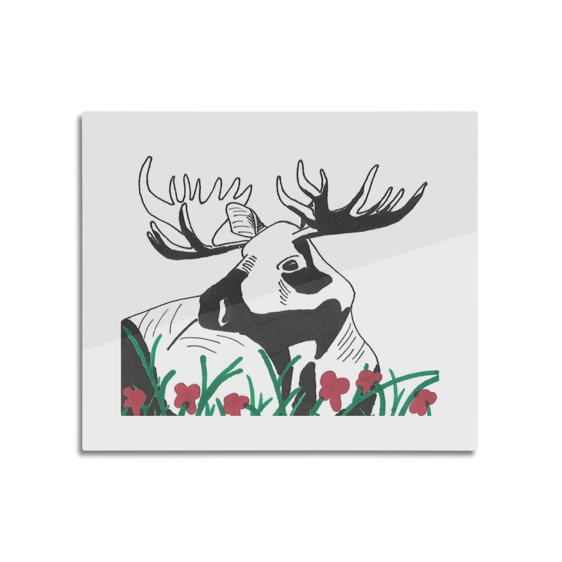 Moose Among Flowers Home Mounted Aluminum Print by The Wilderness Store