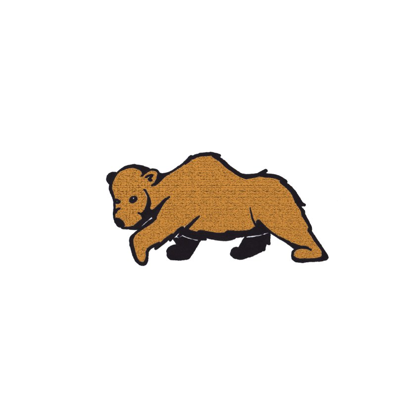 Walking Brown Grizzly Bear by The Wilderness Store